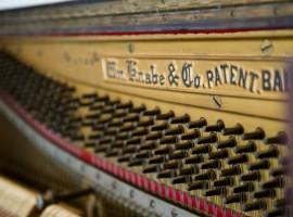 SCI 2-14 09_Emoto-222color